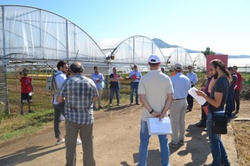 A group of people standing in front of greenhouses.